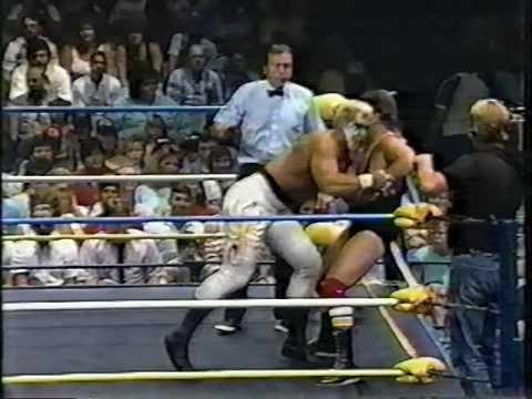 Sting vs. John Brewer [1989-07-15]