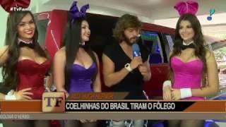 Playboy - Conheça o Novo Time de Coelhinhas da Playboy Brasil - Playboy