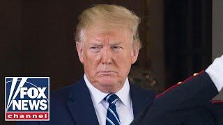 Trump delays ICE immigration raids
