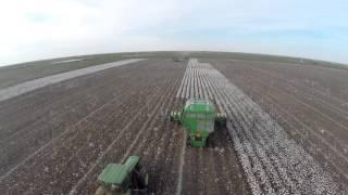 cotton harvest of 2014 Blagrave