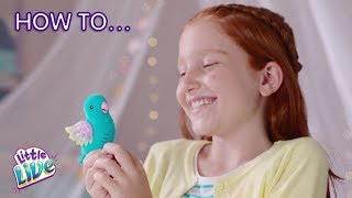 Little Live Pets S8 Light Up Birds   How to Care & Play