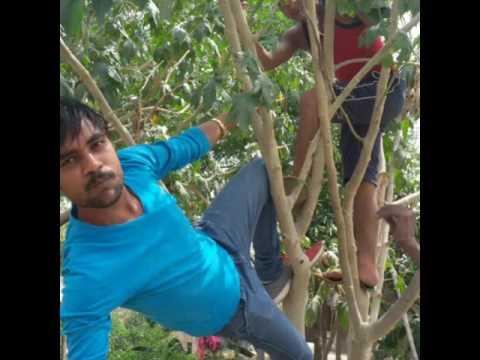 Xxx Mp4 Bhojpuri Songs Desi Vodeo 3gp Sex