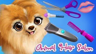 Fun Animal Hair Salon - Pet Animal Care Makeover, Dress Up App For Kids