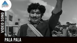 Anandha Jodhi Tamil Movie Songs | Pala Pala Video Song | MGR | Devika | Viswanathan Ramamoorthy
