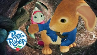 Peter Rabbit - The Lost Tunnel