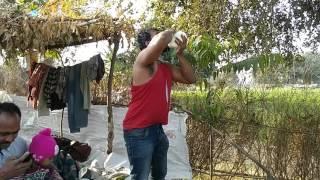 Rural India - Drinking 2 litres Raw Buffalo Milk