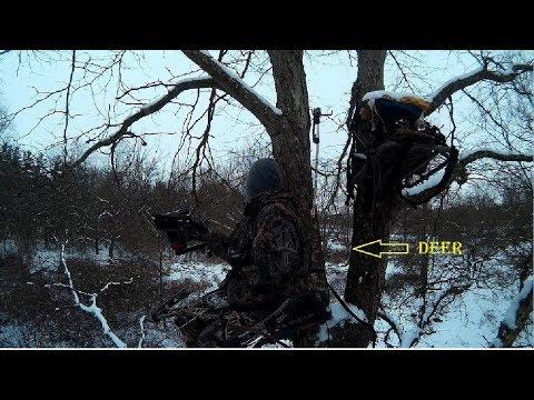 Xxx Mp4 LATE SEASON OHIO BOW HUNT Deer Are Everywhere 3gp Sex