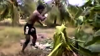 Легенда тайского бокса Буакав ПорПромук
