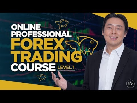 Xxx Mp4 Professional Forex Trading Course Lesson 1 By Adam Khoo 3gp Sex