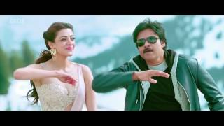Nee Chepakallu Telugu Video Song   Sardaar Gabbar Singh