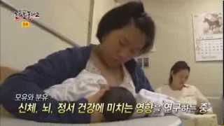 '모유'가 아기의 '뇌'에 미치는 영향__채널A_논리로풀다2 13회