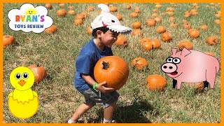 Kids Family Fun Trip to the Farm Halloween Pumpkin Patch Corn Maze Children Activities Kids Toys