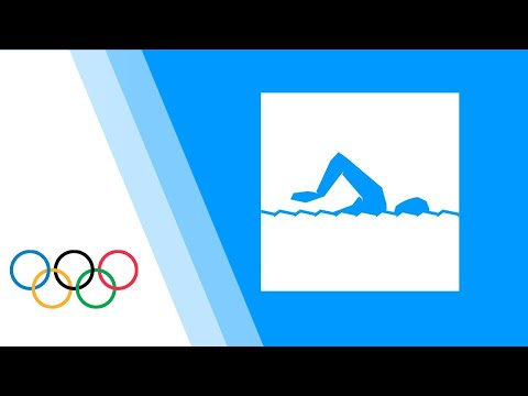 Swimming Men Women Finals London 2012 Olympic Games