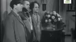 Three stooges থ্রি স্টুজেস Bangla Dubbing   HD   Part 03   Comedy  A Funny Fails