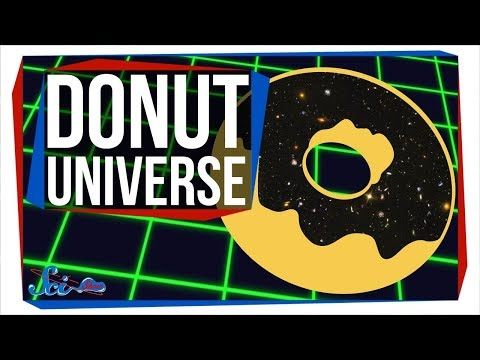 What If the Universe Was Shaped Like a Donut