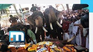 Elephants Kill Seven Last Year| Mathrubhumi News
