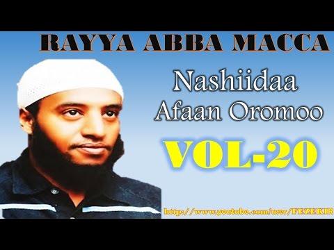 Xxx Mp4 RAYYA ABBA MACCA VOL 20 Best Afan Oromo Neshida 3gp Sex