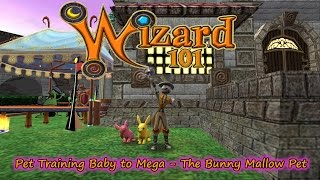 Wizard101 Pet Training Baby to Mega The Bunny Mallow Spring Update
