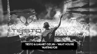 Tiësto & Ummet Ozcan - What You're Waiting