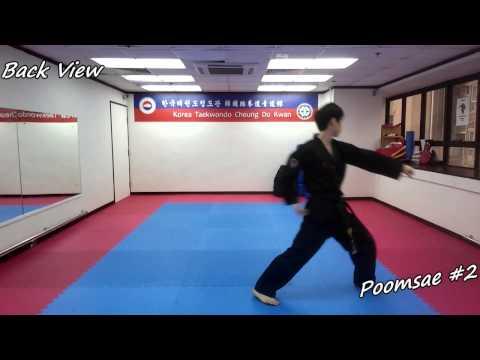 Xxx Mp4 Taekwondo Poomsae 2 Yi Jang Slow Motion Front And Back View 3gp Sex