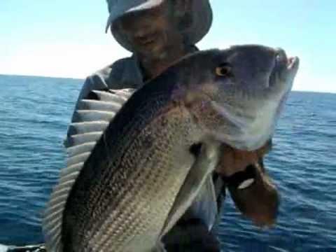 pesca desde embarcacion 38. pescadenton