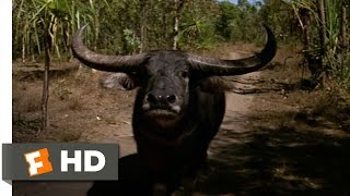 Crocodile Dundee (5/8) Movie CLIP - Mind Over Matter (1986) HD