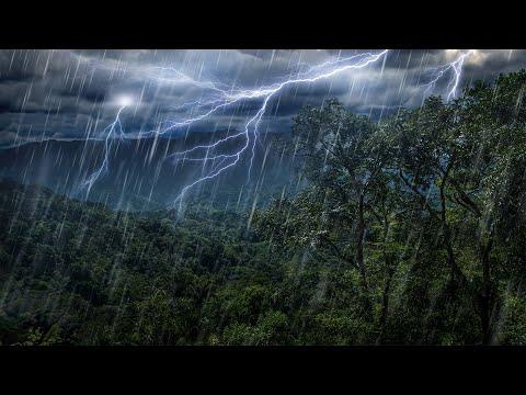 Xxx Mp4 Rain Forest Thunder Rain Sleep Sounds White Noise 10 Hours 3gp Sex