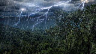 Rain Forest Thunder & Rain Sleep Sounds | White Noise 10 Hours