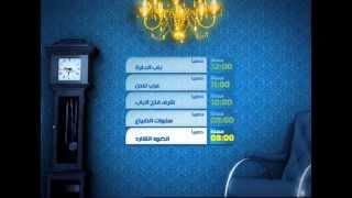 Al Hayah Mosalsalat TV Branding Elements 2008