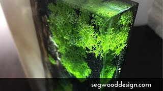 Epoxy L.E.D. Lamp - poplar wood, clear epoxy with black epoxy background