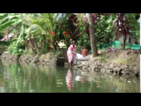 Xxx Mp4 Clothes Washing In The Backwaters Of Kerala 3gp Sex