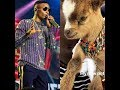 Download Video Download WIZKID AND HIS NEW PET GOAT 3GP MP4 FLV