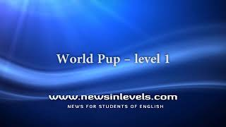 World Pup – level 1