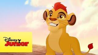 A Guarda do Leão – O que fazer?