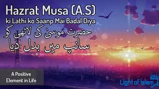 Hazrat Musa (A.S) aur Unke Lathi ko Saanp mai Badal Diya By Maulana Tariq
