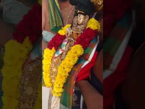 Xxx Mp4 Pushpa Virushti PadukaSahasram Mahotsavam Bengaluru Sri APN Swamy 3gp Sex
