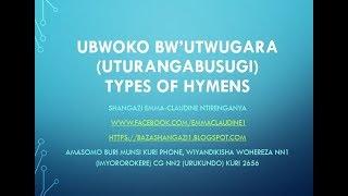 UBUSUGI: Ubwoko bw