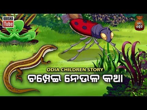 Xxx Mp4 Odia Children Story ଚମ୍ପେଇ ନେଉଳ କଥା Champei Neula Katha Gapa Ganthili Odisha Tube 3gp Sex
