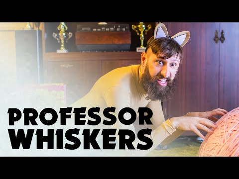 Xxx Mp4 Professor Whiskers Music Video 2 Aunty Donna The Album 3gp Sex