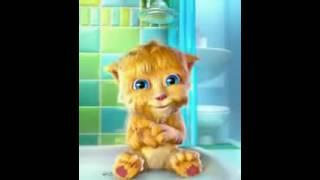 Goog Morning Talking Tom Cat Punjabi Billi Very Funny Video   Video Dailymotion