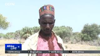 Boko Haram insurgency and its impacts in the Lake Chad region