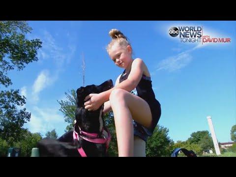 Xxx Mp4 Girl Her Dog Receive New Prosthetic Legs 3gp Sex