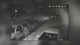 Retired Albuquerque couple seeking help in catching thief
