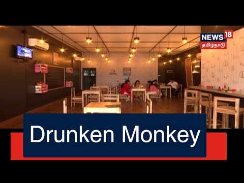 Xxx Mp4 Eat Repeatu Drunken Monkey ECR KANATHUR News18 Tamilnadu 12 Jan 2018 3gp Sex