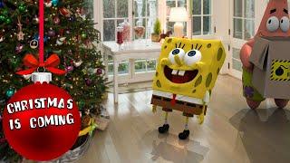 SpongeBob in real life 15