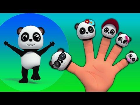 gia đình ngón tay gấu trúc trẻ em & bài hát bé Baby Bao Panda Finger Family Finger Family Song