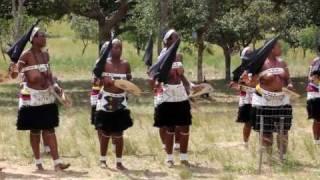 Youth for Shembe, Amakhosazane Dance