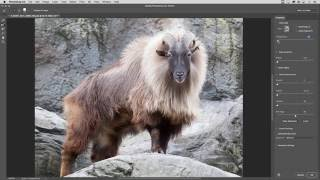 Select and Mask Taskspace in Photoshop CC