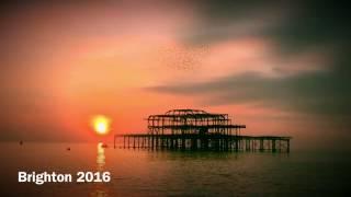Brighton 2016