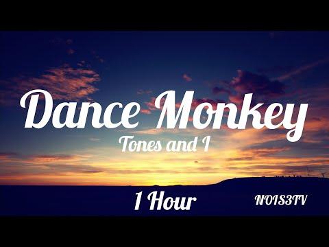 Tones and I Dance Monkey 1 Hour
